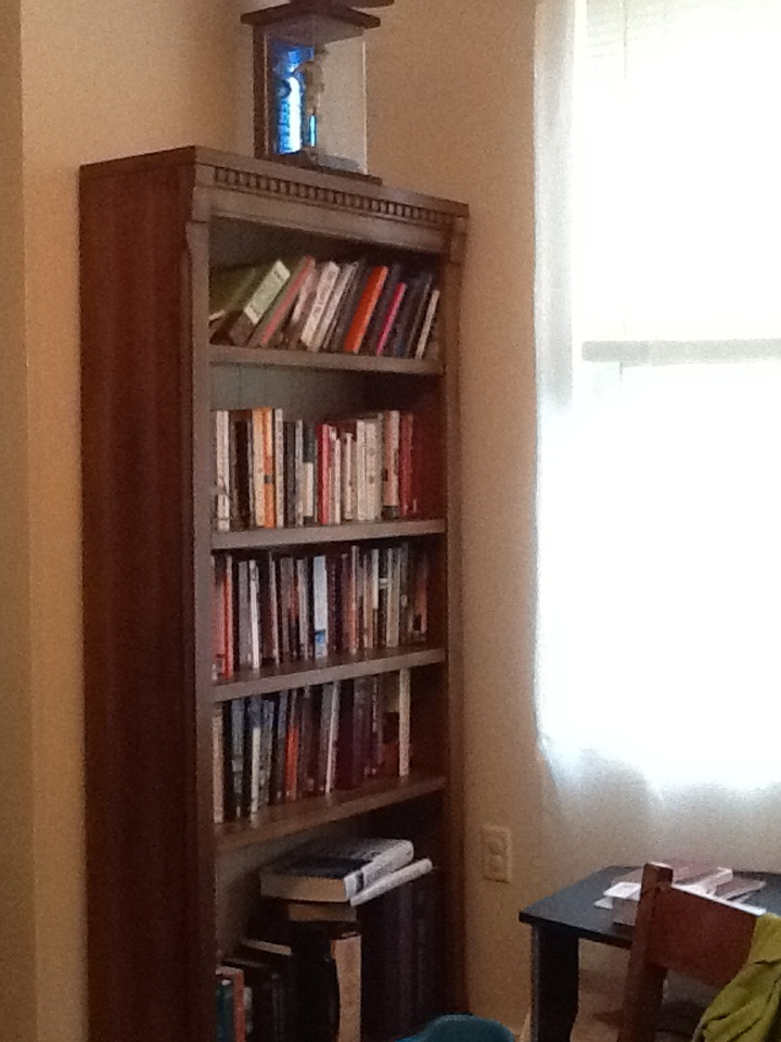 Why There Are Bookshelves In My Dining Room 7 Days Time