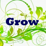 One Word 2014: GROW