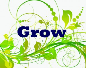 GROW One word 2014