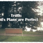 21 Truths: God's Plans are Perfect