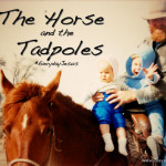 The Horse and the Tadpoles #EverydayJesus Link-Up