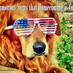 6 (Humorous) Signs that Homecoming is Coming (Army Wife Network)