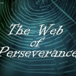 Web of Perseverance